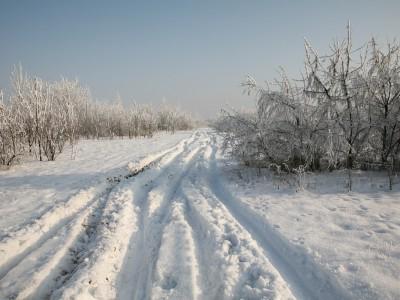 Zimowa nostalgia