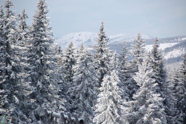 Na zaśnieżonej Czernej Horze