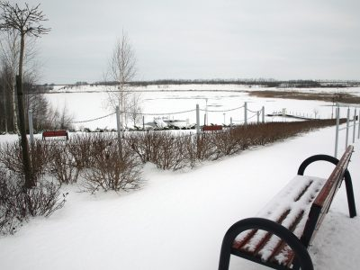 Pod śniegiem (2)
